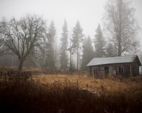 Foto: Øyvind Antonsen