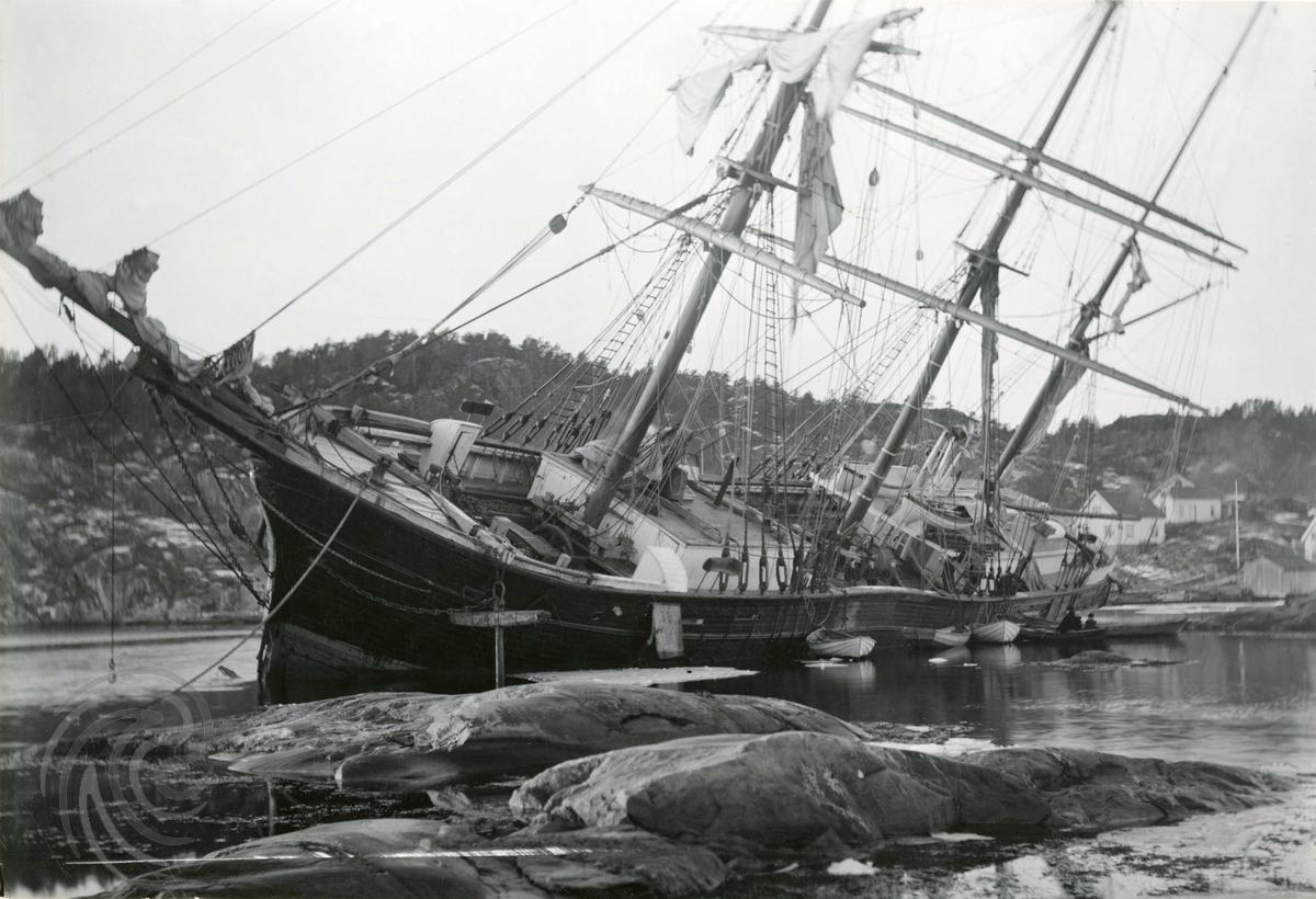Bark Latona strandet på Skomakerkjær i Risør i 1905. Foto: Ukjent, Norsk Maritimt Museum
