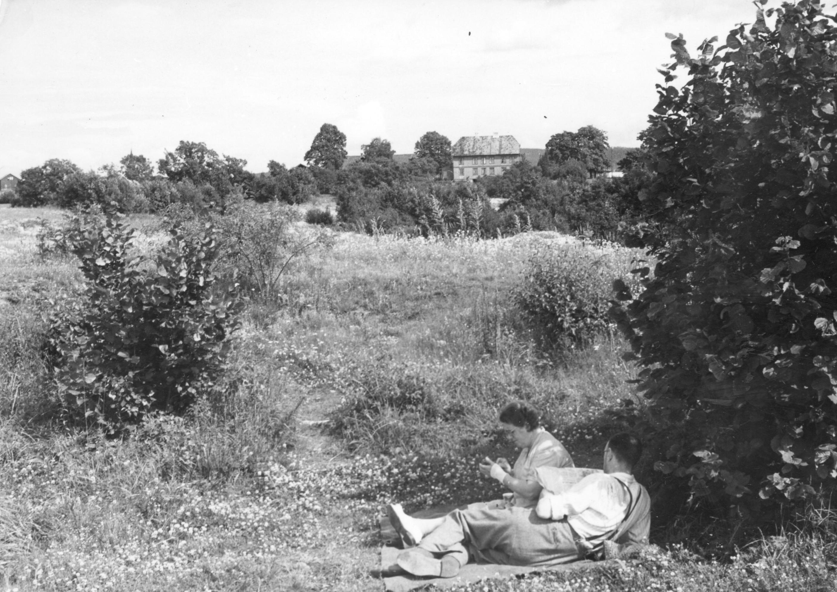 Utbyggingsmuligheter i Aker. Her fra Valle-Hovin i 1950. Foto fra byplankontoret. Fotograf: Jarle Birketvedt. A-10002/Ua/0014/046.